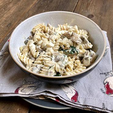 Gluten Free Creamy Mushroom Pasta Recipe